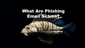 What Are Phishing Email Scams