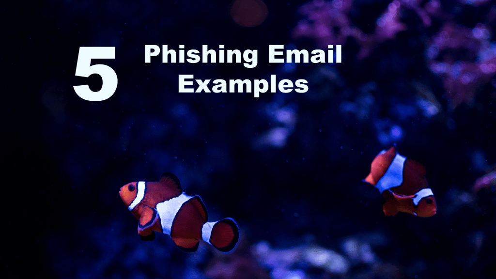 5 Phishing Email Examples
