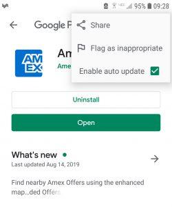Screenshot Google Play Auto Update