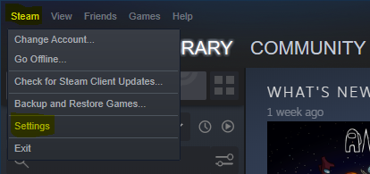 Steam application settings